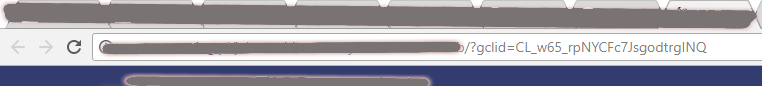obrazek - znacznik GCLID widoczny w pasku adresu